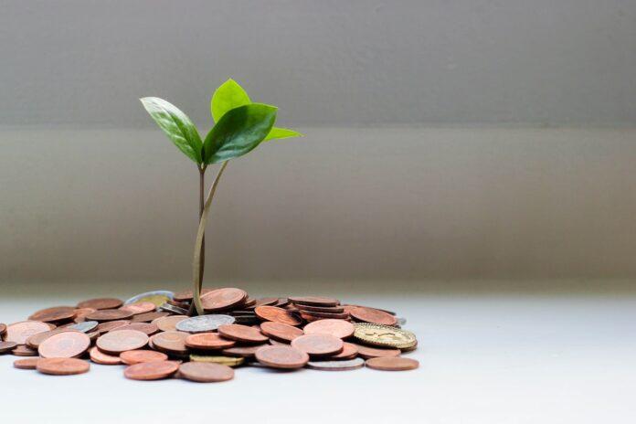 růstové akcie